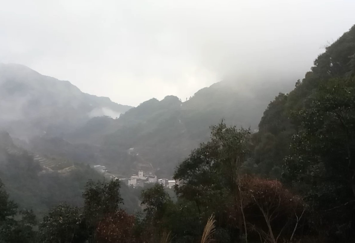 山顶随拍:云笼雾绕的茶乡——丰顺县洋西坑