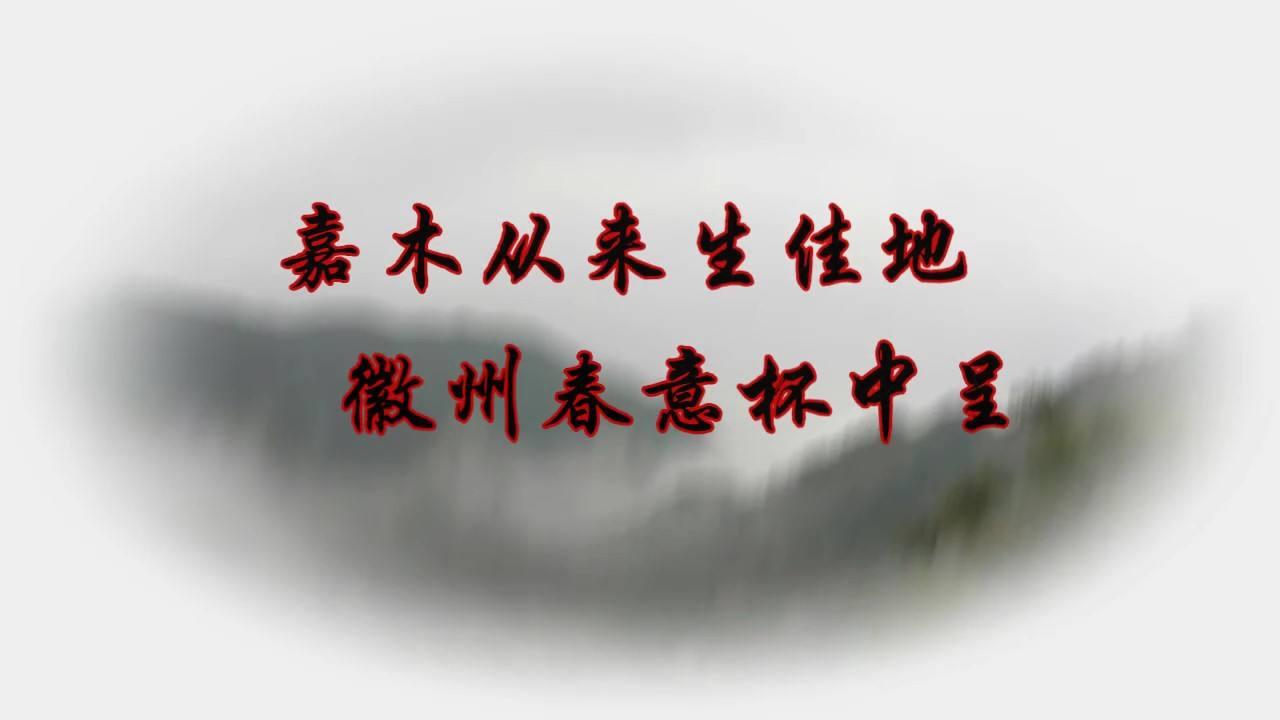浮生读茶:徽州春意杯中呈——黄山毛峰