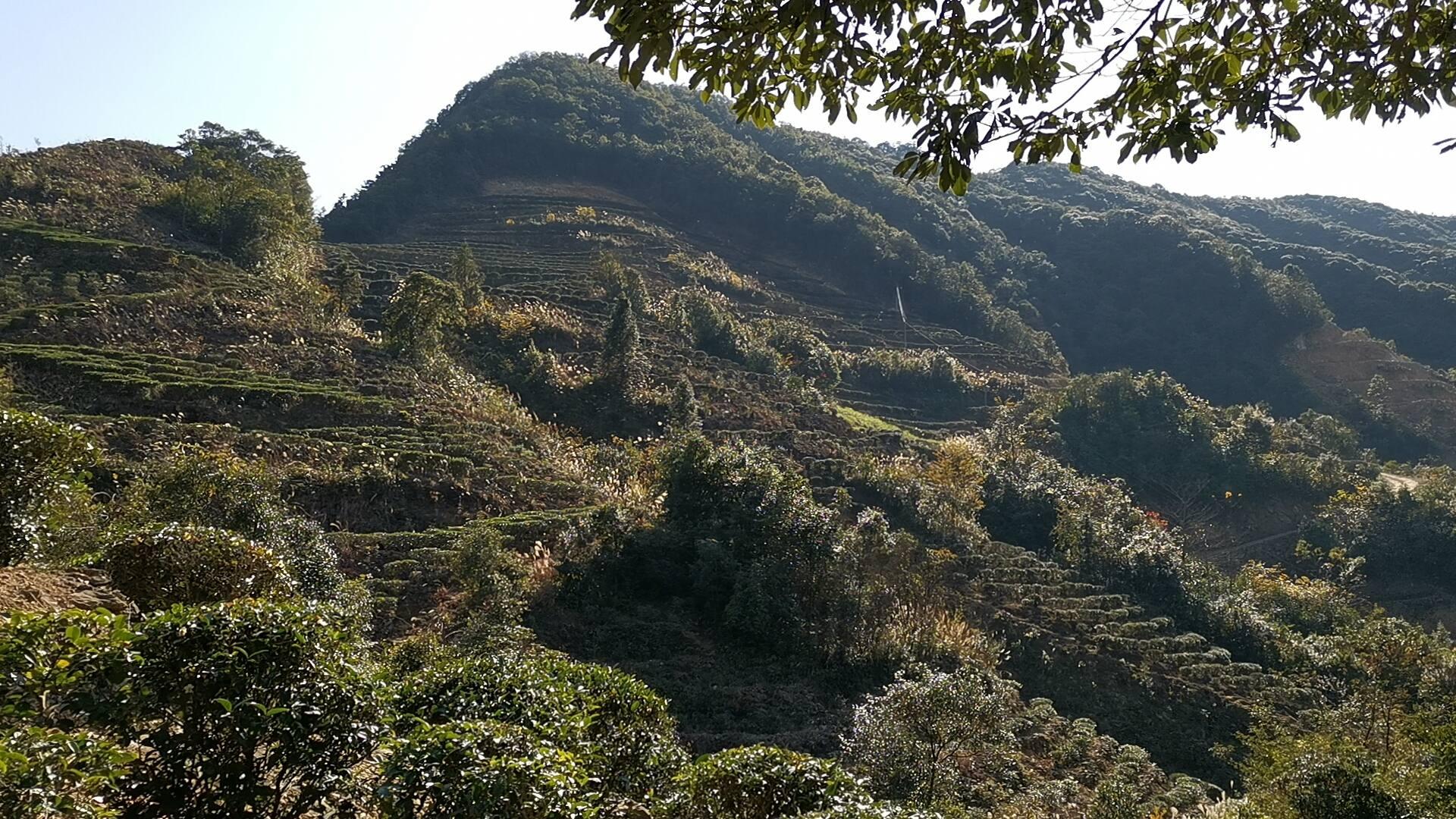 丰顺县洋西坑:群山耸峙,峰峦叠嶂
